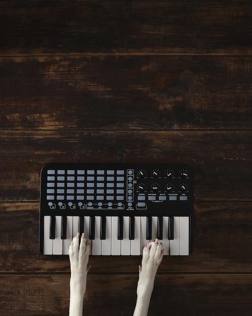 Vista dall'alto due zampe di cane sul mixer tastiera wireless compatto pianoforte midi suona la melodia. Foto Gratuite