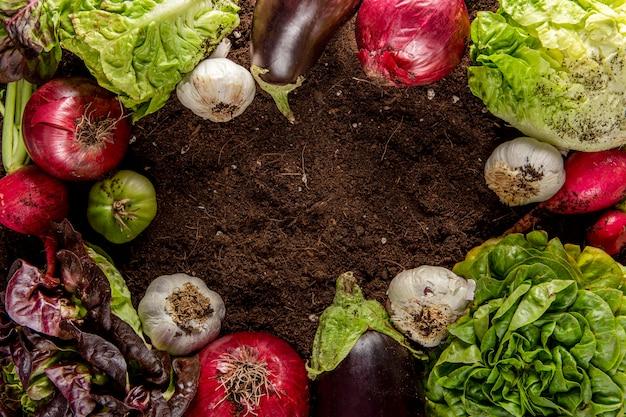Vista dall'alto di verdure con melanzane Foto Gratuite