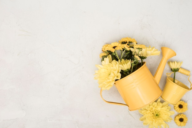 Top view watering can with yellow flowers Free Photo