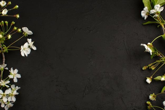 어두운 바닥에 상위 뷰 흰색 꽃 무료 사진