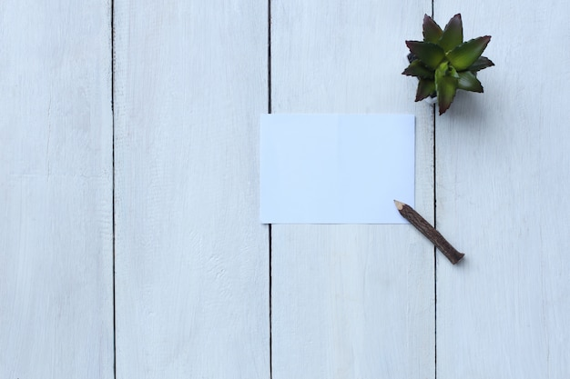 Top View White Paper Pencil And Flower Pot On White Wood Floor And