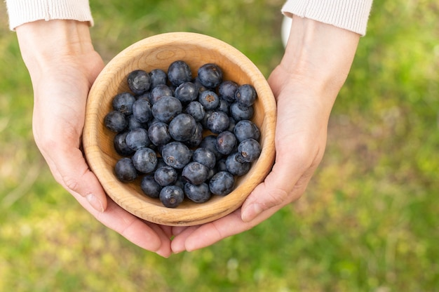 Top view woman holding bowl with blueberries Free Photo