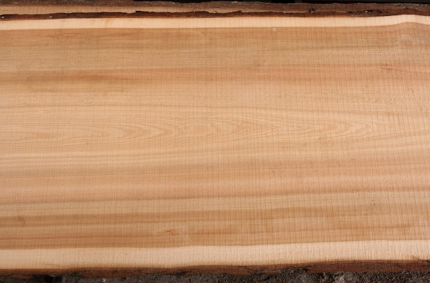 Top view on wooden texture larch slab with bark. Premium Photo