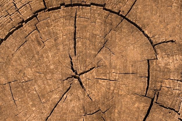 Vista dall'alto della struttura in legno Foto Gratuite
