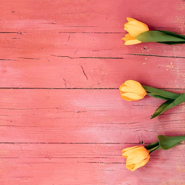 Vista dall'alto di fiori di tulipano giallo sul pavimento di legno Foto Gratuite