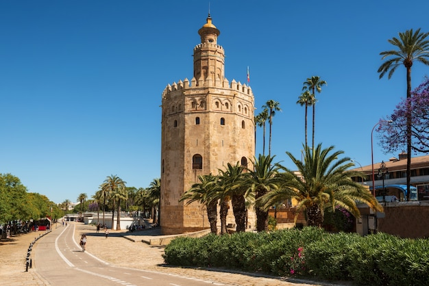 Torre del oro gold tower medieval landmark from early 13th century in seville, spain, andalusia region. Premium Photo