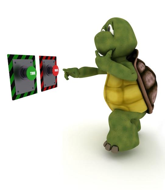 Tortoise dubbio Foto Gratuite