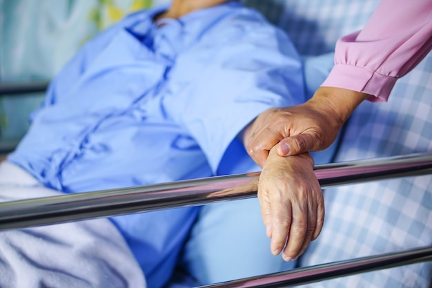 Touching hands asian senior or elderly old lady woman patient with love and care. Premium Photo