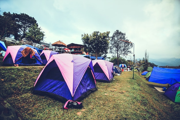 Tourist camping in the mountain doi  sureya,doi inthanon, chiangmai,of thailand - foggy in a morning Premium Photo