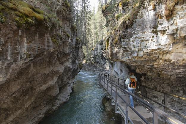 캐나다에서 캡처 한 존스턴 캐년의 나무 통로를 걷는 관광객 무료 사진