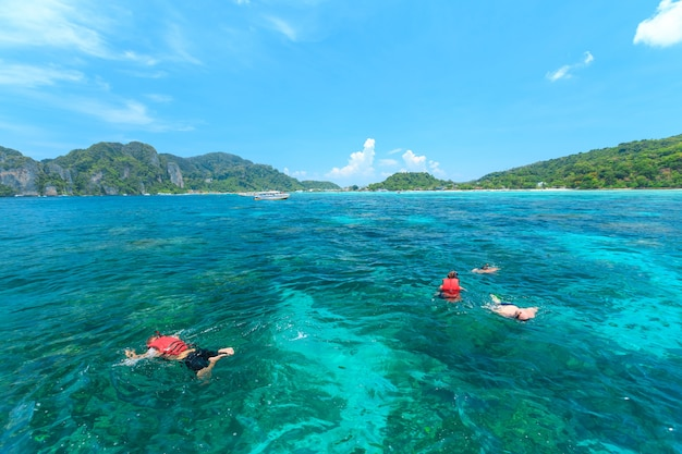 Tourists swimming and snorkeling in andaman sea at phi phi islands one of the most beautifull island Premium Photo