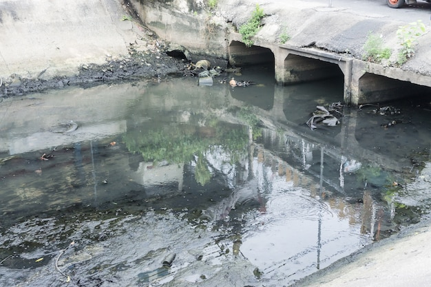 Toxic water running from sewers in dirty underground sewer Premium Photo