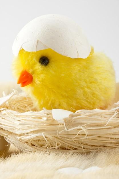 卵殻のおもちゃの赤ちゃんの鶏 Premium写真