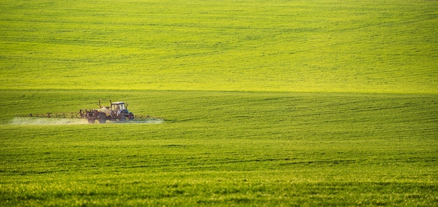Tractor spraying pesticides on field with sprayer at summer Premium Photo