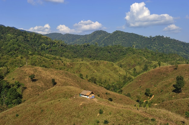 Tradition hut on the mountain  in nan province, north of thailand Premium Photo