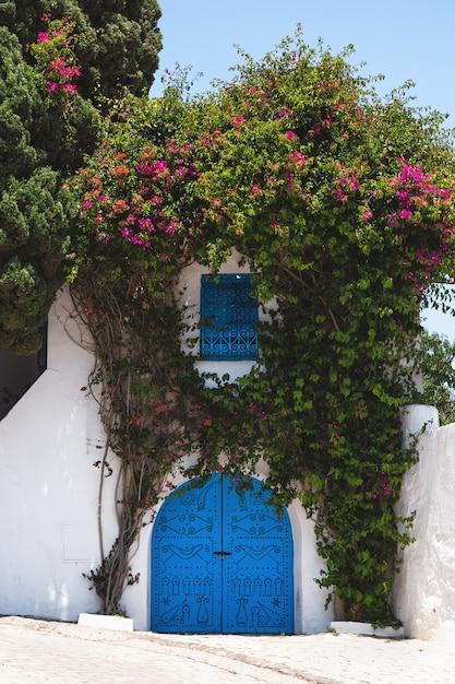 シディブサイドチュニジアの通りの白い家の伝統的な青いドアと窓 Premium写真
