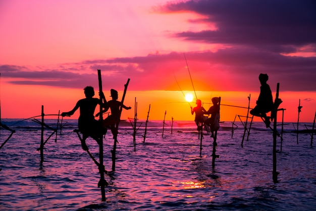 Traditional fishermen in sri lanka Premium Photo