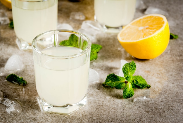 Traditional italian limoncello with fresh citrus, ice and mint Premium Photo