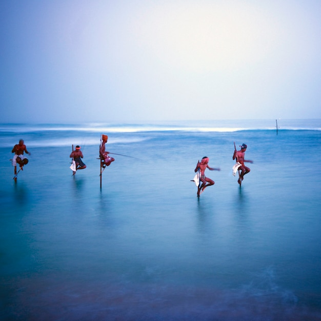 Traditional stilt fishermen in sri lanka. Free Photo