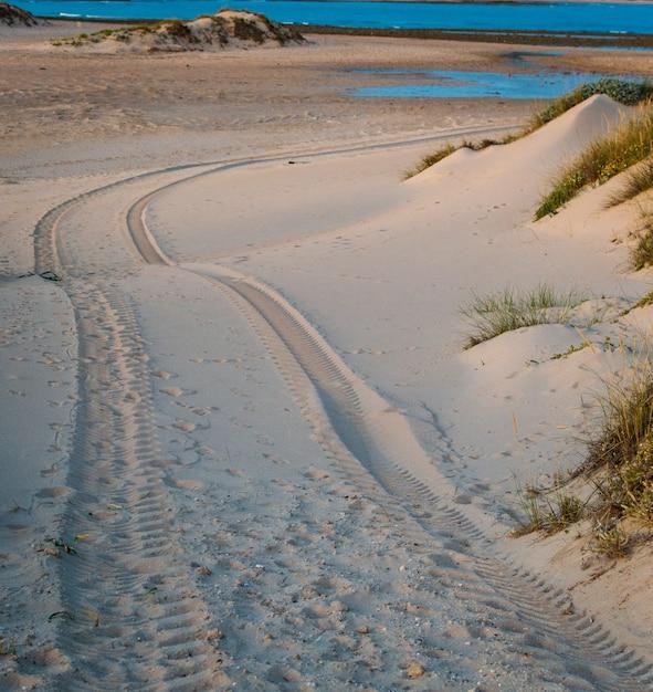 Печать покрышки автомобиля четырехколесного привода на песчанной дюне в пляже trafalgar, кадиса, испании. Premium Фотографии