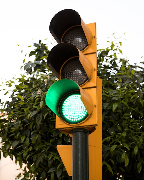 Traffic light with green color on in front of green tree Free Photo