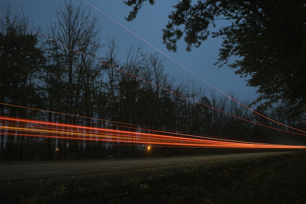 Traffic lights in the twilight, turning road Premium Photo
