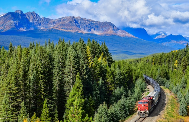 秋、バンフ国立公園、カナディアンロッキー、カナダのボウバレーを通過する列車。 Premium写真
