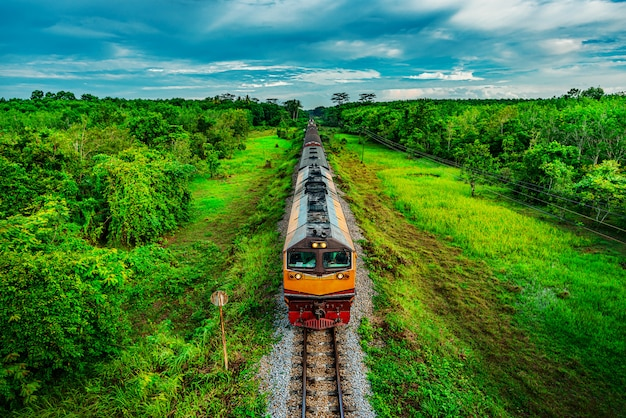 Train on railway transportation in forest and color of sunset Premium Photo