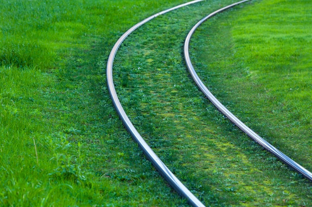 Tram rails covered with green grass Premium Photo
