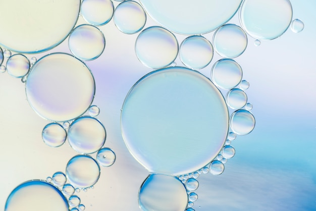 Transparent abstract different bubbles texture Free Photo