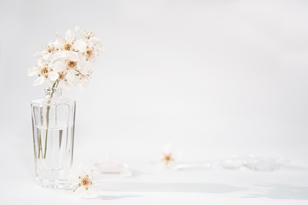 A transparent bottle of perfume and a sprig with white flowers next to which lies a glass rod and a cap Premium Photo
