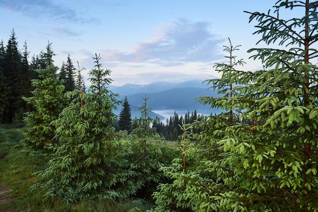 Путешествие, треккинг. летний пейзаж - горы, зеленая трава, деревья и голубое небо. Бесплатные Фотографии