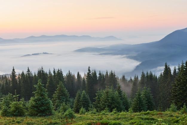 여행, 트레킹. 여름 풍경-산, 푸른 잔디, 나무와 푸른 하늘. 무료 사진