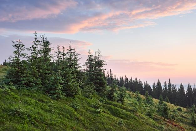 Viaggi, trekking. paesaggio estivo - montagne, erba verde, alberi e cielo blu. Foto Gratuite