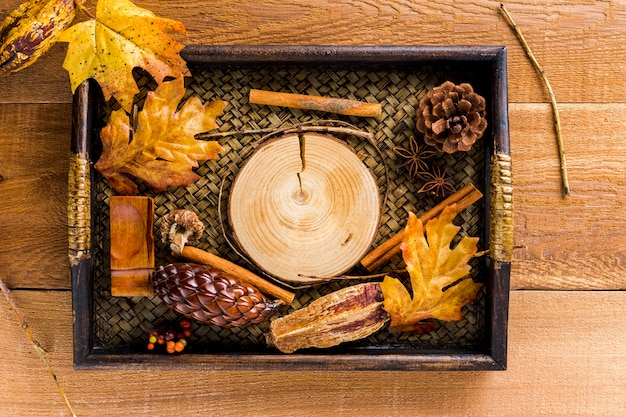 Tray with dried leaves and cones autumn decoration Free Photo