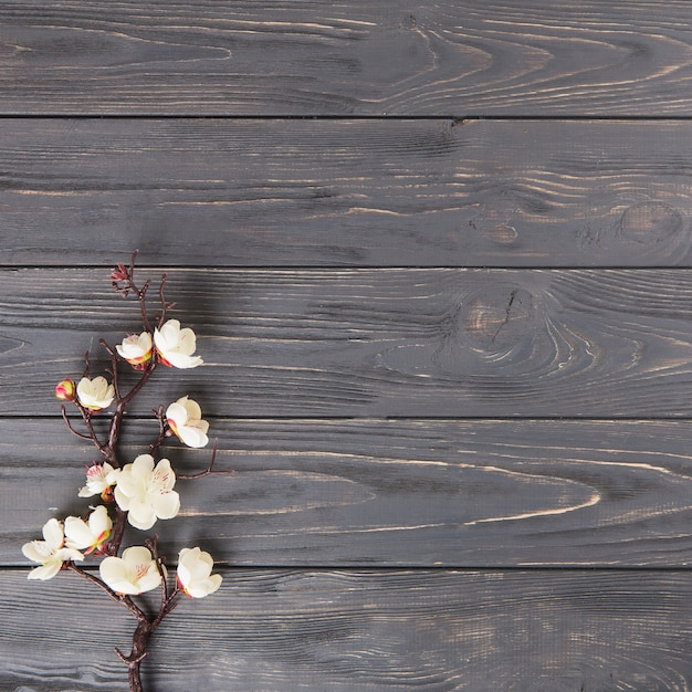 Tree branch with white flowers on wooden table Free Photo