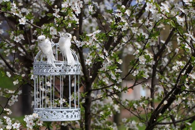 春の庭の木の桜と木のケージの2羽の鳥 Premium写真