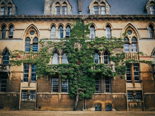 オックスフォードのクライストチャーチカレッジの建物の壁に生えている木。 無料写真