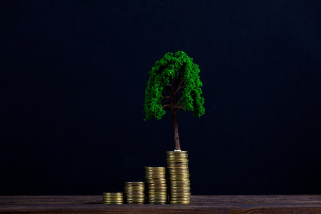 Tree growing on pile of golden coins Premium Photo