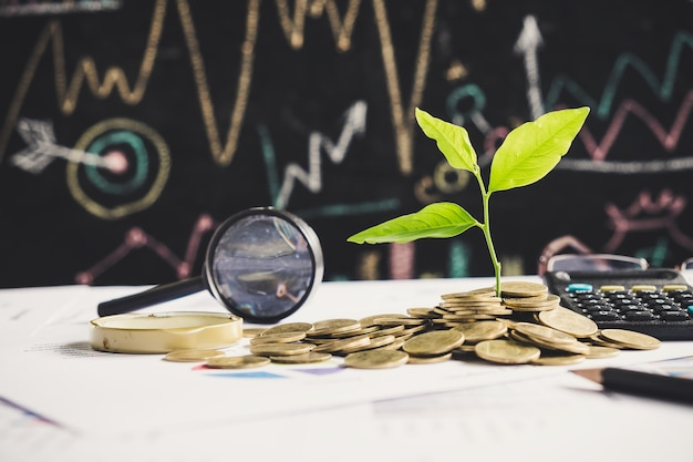 Tree growing on stack of coins on financial chart report with magnifying glass and calculator in background, idea for business growth concept Premium Photo