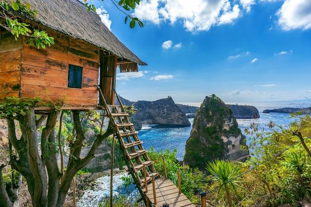 Дом на дереве и алмазный пляж на острове нуса пенида, бали в индонезии Бесплатные Фотографии
