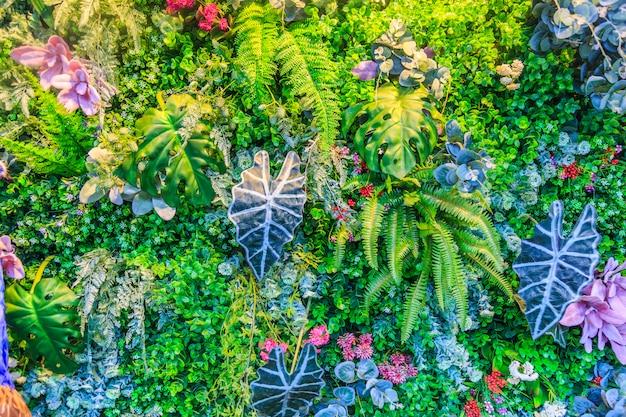나무 자연 패턴 여름 나뭇잎 화려한 무료 사진