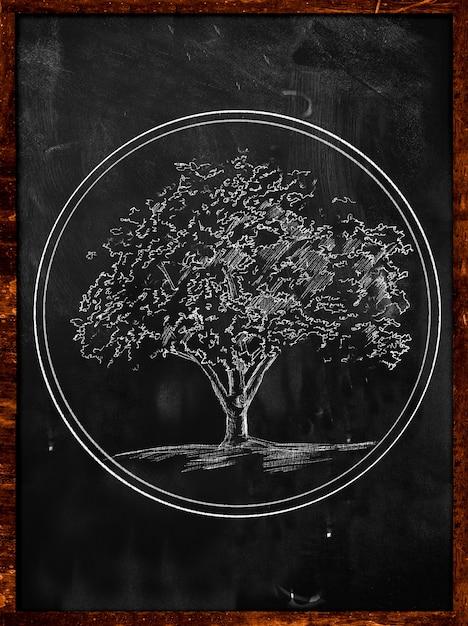 Tree symbol sketch on blackboard Free Photo