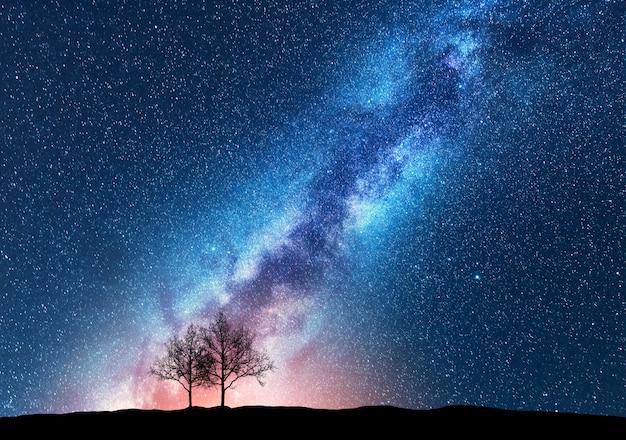 하 수와 함께 밤하늘에 대 한 나무 프리미엄 사진