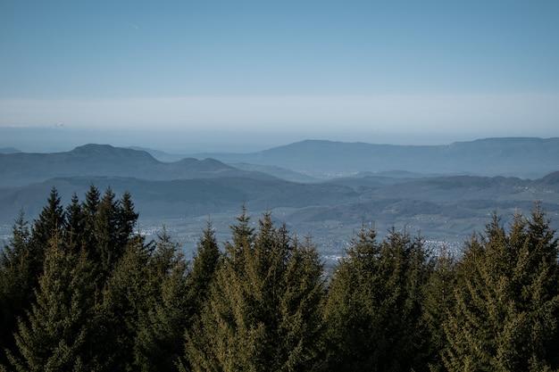 Alberi e montagne durante il giorno Foto Gratuite