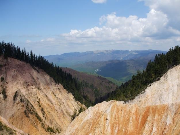Деревья в горах природного парка апусени в румынии Бесплатные Фотографии