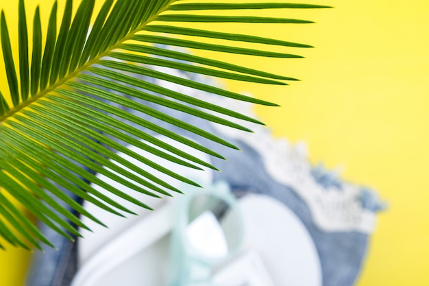 Tropical background palm trees branches with blurred set of woman's things accessories to beach season. Premium Photo