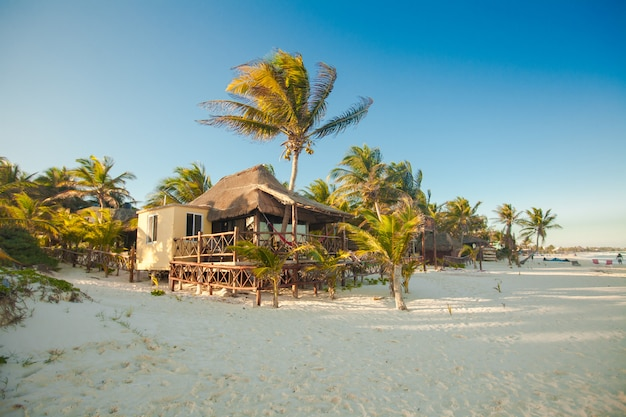Tropical beach bungalow on ocean shore among palm trees Premium Photo