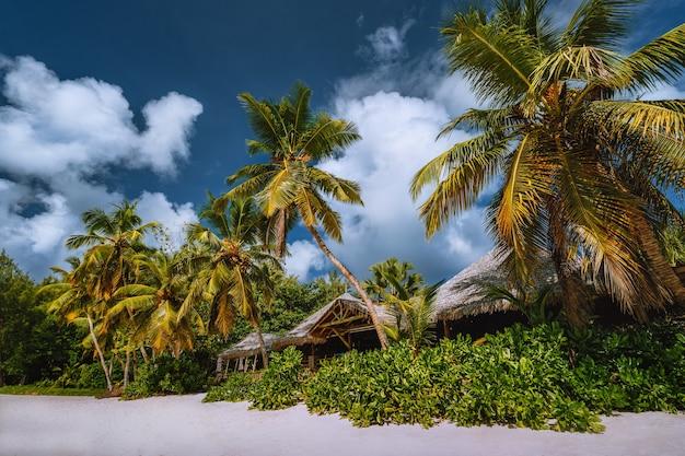 Тропический пляжный пейзаж с кокосовыми пальмами и соломенными крышами. райский экзотический отпуск. Premium Фотографии
