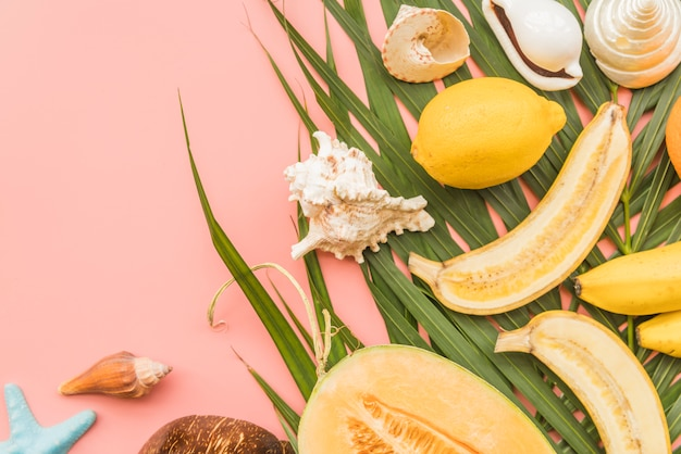 Tropical fruits and shells on palm leaves Free Photo